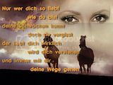 SPRUCH Gstebuchbilder
